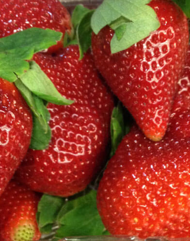 Close up picture of Strawberries